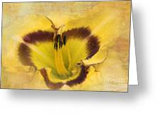 Cheerfully Yours Greeting Card