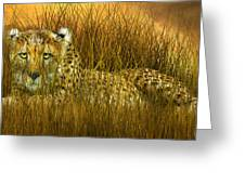 Cheetah - In The Wild Grass Greeting Card