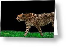 Cheetah On The Prowl Greeting Card
