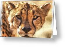 Cheetah One Greeting Card