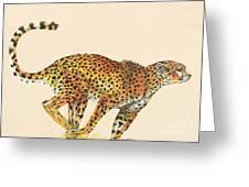 Cheetah Painting Greeting Card