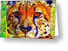 Face Of The Cheetah Greeting Card