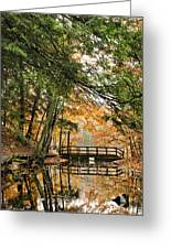 Chenango Valley State Park Greeting Card by Christina Rollo