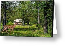Cherokee Lake Thousand Trails Preserve Greeting Card