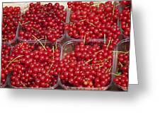 Currants Greeting Card