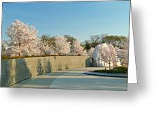 Cherry Blossoms 2013 - 022 Greeting Card