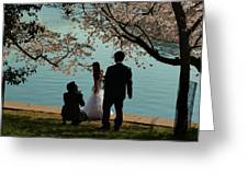 Cherry Blossoms 2013 - 054 Greeting Card