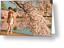 Cherry Blossoms 2013 - 079 Greeting Card