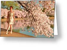 Cherry Blossoms 2013 - 080 Greeting Card