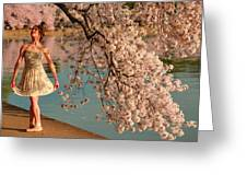 Cherry Blossoms 2013 - 082 Greeting Card by Metro DC Photography