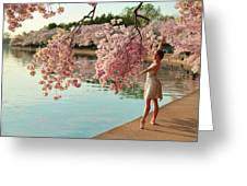 Cherry Blossoms 2013 - 085 Greeting Card