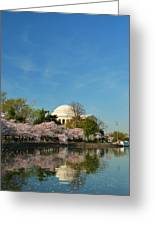 Cherry Blossoms 2013 - 098 Greeting Card