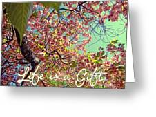 Cherry Blossoms And A Life Quote Greeting Card
