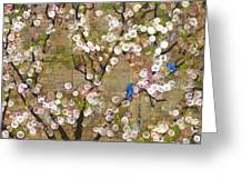 Cherry Blossoms And Blue Birds Greeting Card by Blenda Studio