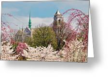 Cherry Blossoms And The Sacred Heart Greeting Card