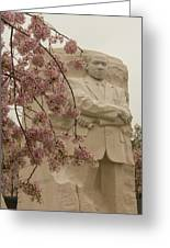 Cherry Blossoms At The Martin Luther King Jr Memorial Greeting Card