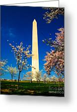 Cherry Blossoms At The Monument Greeting Card