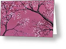 Cherry Blossoms  Greeting Card by Darice Machel McGuire
