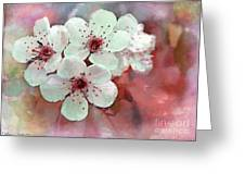 Apple Blossoms In Soft Pink - Digital Paint Greeting Card