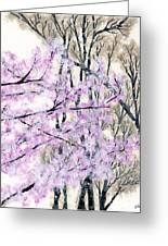 Cherry Blossoms In Spring Snow Greeting Card