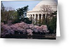 Cherry Blossoms Jefferson Memorial Greeting Card