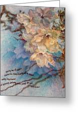 Cherry Blossoms N Lace Greeting Card
