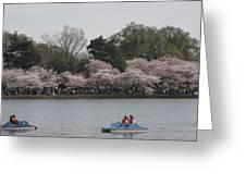 Cherry Blossoms - Washington Dc - 011315 Greeting Card
