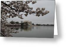 Cherry Blossoms With Jefferson Memorial - Washington Dc - 011343 Greeting Card