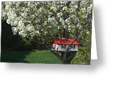 Cherry Home Greeting Card