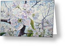 Cherry In Blossom Greeting Card by Andrei Attila Mezei