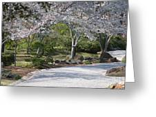 Cherry Lane Series  Picture G Greeting Card