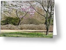 Cherry Lane Series  Picture I Greeting Card