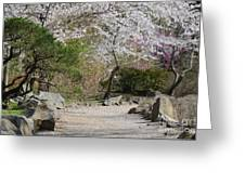 Cherry Lane Series  Picture J Greeting Card