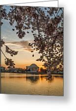 Cherry Sunrise Burst Greeting Card