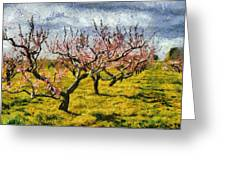 Cherry Trees 3.0 Greeting Card