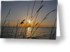 Chesapeak Bay At Sunrise Greeting Card
