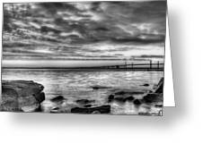 Chesapeake Splendor Bw Greeting Card by JC Findley