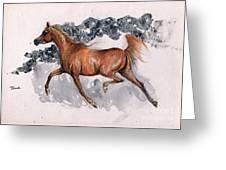 Chestnut Arabian Horse 2014 11 15 Greeting Card