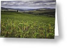 Chianti Region Of Tuscany Greeting Card