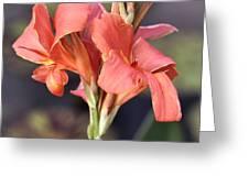 Chicago Botanical Gardens - 79 Greeting Card