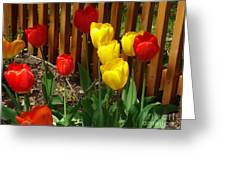 Chicago In The Spring Greeting Card