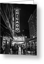 Chicago Nights Greeting Card by Terry Rowe