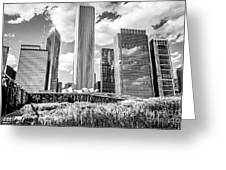 Chicago Skyline Lurie Garden Black And White Picture Greeting Card