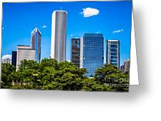 Chicago Skyline With Grant Park Trees Greeting Card