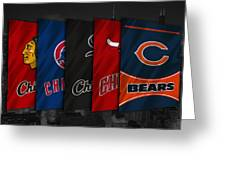 Chicago Sports Teams Greeting Card
