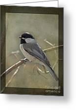 Chickadee Early Bird II Greeting Card