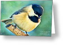 Chickadee Greeting Card Size - Digital Paint Greeting Card