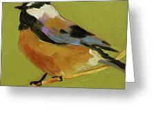 Chickadee Iv Greeting Card