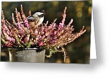 Chickadee On Heather Greeting Card