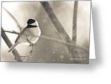 Chickadee Sparkles Greeting Card